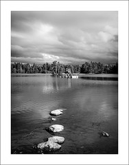 Rocks, platform and island II (Christa (ch-cnb)) Tags: trees sky blackandwhite lake reflection tree water norway pine clouds forest reflections island norge wooden duck woods nikon rocks forum assignment platform dramatic ducks diving olympus pines adapter mallard dslr waterfowl drama trondheim zuiko omd mallards bymarka em5 lianvatnet akam zd1260mm microfourthirds mmf1