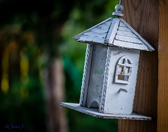 Birdhouse (JuanJ) Tags: county usa house green art yard photography virginia photo backyard nikon unitedstates birdhouse prince william va nikkor princewilliam woodbridge lightroom d600