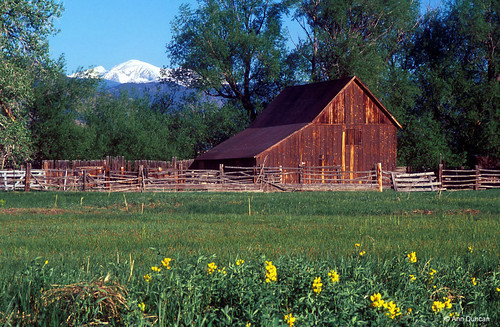 Photo - The historic Doran Barn in spring, along South Boulder Creek trail.
