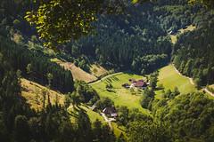 Simonswäldertal (Light Makes Music) Tags: germany blackforest badenwuerttemberg canoneos60d tamron18270mmf3563