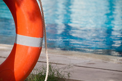ring-buoy (Konstantin Yolshin) Tags: life blue red summer rescue orange white beach water pool swim outdoors belt marine lifebelt guard rope device save safety ring aid health round safe lifebuoy protection buoy lifesaver saver ringbuoy