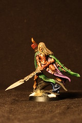 Wood Elf Highborn front (Randy_Lek) Tags: board games warhammer knight mage boardgames mageknight