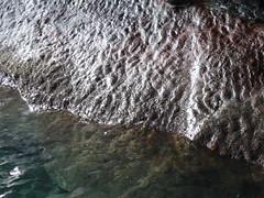 rides de vagues datant de la préhistoire (empreintes fossiles, marées) (Jeanne Menjoulet) Tags: france fossile préhistoire prehistoric paléozoïque roches fossil waves vagues grotte morgat empreinte