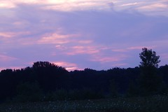 Colorful dusk in the country (pipsqueak9126) Tags: dusk aftersunset colorfulsky countrylandscapes sunsetinthecountry