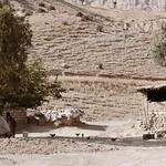 Shaqlawa, Kurdistan