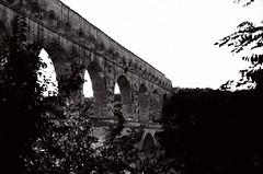 le pont du gard (lepublicnme) Tags: bw white black france film architecture analog nikon noir august nb 25 f80 blanc argentique efke 2013 lepontdugard