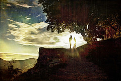 In front of the sun (Vanessa Vox) Tags: landscape alberoefoglia infrontofthesun drômeprovençale memoriesbook creativemindsphotography magicunicornverybest sailsevenseas kurtpeiserexcellence vanessavox