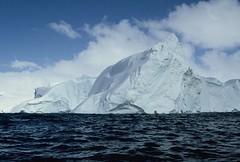 Paradise Bay (44) (Eugene Regis) Tags: port point island bay penguins gentoo paradise harbour cove deception antarctica seals cape horn nikko channel albatross cierra lemaire lockroy jubila
