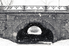 Snow Day in Central Park (RebeccaDalePhotography) Tags: nyc snow newyork beautiful weather centralpark