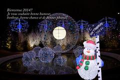Bonne annee (moscouvite) Tags: voyage paris france hiver explore fontaine sonydslra450 heleneantonuk