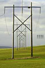 The Power Of Framing (Ian Sane) Tags: road camera field lines oregon rural canon lens ian eos is dof power farm country perspective images 7d coon triumph land electricity usm framing depth hollow sane the dennison sublimity ef100400mm of f4556l