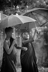 MANDALAY, Myanmar (Komi07) Tags: voyage travel portrait people bw myanmar asie enfant parapluie birmanie