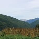 ながわ山彩館風景2