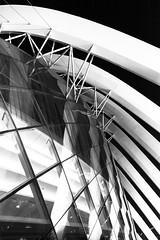 Melding geometries (Chin Li Zhi) Tags: urban blackandwhite bw glass architecture modern night buildings singapore geometry steel human greenhouse manmade fujifilm fusion pillars buttress x100 gardensbythebay marinabaysands x100s chinlizhi