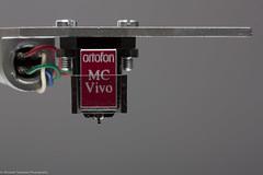 Ortofon MC Vivo Red (Accio85) Tags: macro ex canon sigma os canonrebel 105 f28 dg 105mm canondigital sigmalens hsm sigmaex canon450d canoneos450d canonrebelxsi sigmaforcanon sigmahsm