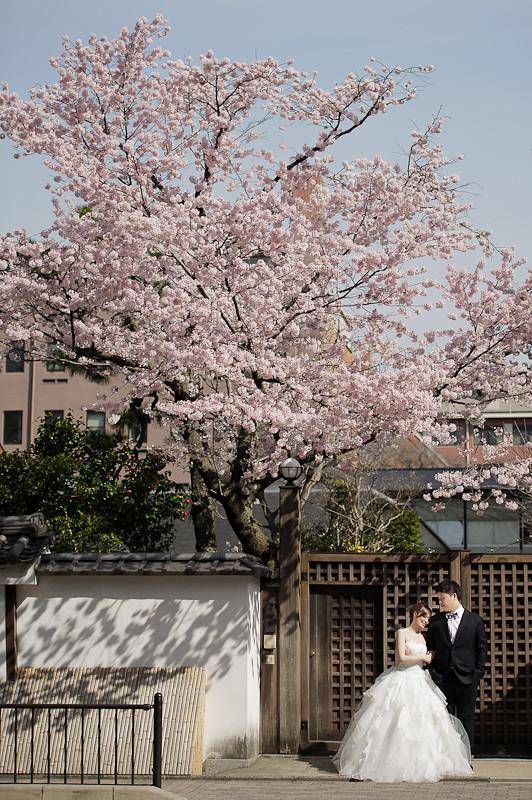 日本婚紗,關西婚紗,京都婚紗,京都植物園婚紗,京都御苑婚紗,清水寺和服,白川夜櫻,海外婚紗,高台寺婚紗,DSC_0012