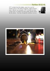 "12-1 <a style=""margin-left:10px; font-size:0.8em;"" href=""http://www.flickr.com/photos/110347743@N05/14136792825/"" target=""_blank"">@flickr</a>"