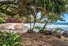 Koki Beach, Maui (philhaber) Tags: park trees hawaii sand maui pacificocean hana kokibeach