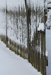 (:Linda:) Tags: snow germany village open row thuringia woodenfence gardengate nobw brden
