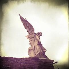 Fallen Angels 1 (edu_izu) Tags: