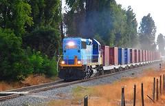 CFX por Maip (TheFepaser) Tags: tren diesel via contenedores maipu cfx ferrea transap locmotora d2801