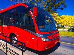 Ônibus Expresso Biarticulado e Ipê Amarelo - Curitiba - Paraná (Eduardo PA) Tags: windows paraná nokia phone amarelo curitiba e microsoft ipê expresso wp 1020 ônibus lumia biarticulado pureview