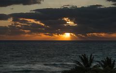 32_.Alofting..2.1.2015 (Miguel Reinfeld (Mijaelo)) Tags: ocean seagulls seascape birds clouds sunrise shoreline cloudsstormssunsetssunrises