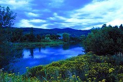Down by the Riverside (Shutterbuglette) Tags: travel trees summer canada clouds reflections river evening lowlight weeds scenery riverside dusk cottage hills wildflowers lush rushes summercottage landscapephotography shuswapriver bclandscapes canadianscene shutterbuglette