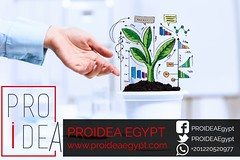 3f810c9c-9971-43d7-90ce-e7c9e86f122e - PROIDEA Egypt  For Website Design company and Development in egypt -  http://www.proideaegypt.com/3f810c9c-9971-43d7-90ce-e7c9e86f122e/ (proideaegypt) Tags: websitedesigndevelopmentlogodesignwebhostingegyptcairowebdesign russianfederation business income profit currency money sprout tree grow success closeup startup wealth growth arm palm economy loan interest investment woman ecology leaf finance responsibility care dollar euro plant hand up symbol savings green protection seedling financial progress