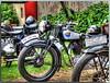 Oldtimertreffen in Schöneiche bei Berlin - BF (Peterspixel from Peter Althoff) Tags: bmw motorcycle dnepr bsa nsu simson motorrad ifa zündapp motocyclette мотоцикл днепр birminghamsmallarmscompany wehrmachtsgespann awo425 nsumotorenwerke