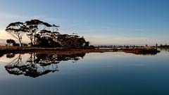 (bfcnz) Tags: new newzealand reflection bay reflect zealand nz hawkesbay hawkes cycletrail