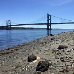 Tacoma Narrows Bridge-5-10-16 (Engage Northwest) Tags: bridge waterfront pugetsound tacoma gigharbor thenarrows narrowsbridge narrowspark penmetparks