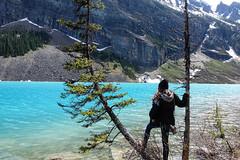 DSC03762 (NIKKI BRITTAIN) Tags: park canada color art nature photography banff lakelouise