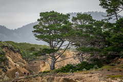 Cloudy day at Point Lobos (randyherring) Tags: california park ca trees mountains green nature point coast us sand rocks afternoon unitedstates cloudy outdoor hiking tourists shore recreation pointlobos carmelbythesea pointlobosstatenaturalreserve