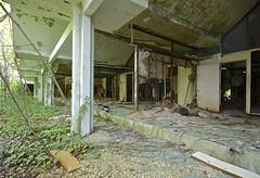 Queen Snake (jgurbisz) Tags: abandoned newjersey industrial nj laboratory hightstown vacantnewjerseycom nationallead jgurbisz