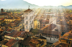Sunlight over Lucca (Arutemu) Tags: city italien light italy panorama sun sunlight architecture canon lights town italian europe italia european cityscape view perspective eu ciudad lucca it panoramic medieval tuscany vista toscana townscape tamron  renaissance birdseyeview ville   6d   28300           tamron28300   eos6d  canon6d