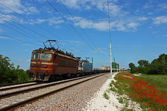 Cargo Horses (Krali Mirko) Tags: railroad train railway cargo bulgaria freight tanker fuel 43 skoda bdz 43526 kadievo
