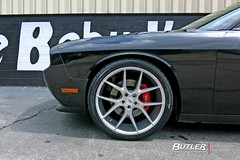 Dodge Challenger with 22in Savini BM14 Wheels and Pirelli Tires (Butler Tires and Wheels) Tags: cars car wheels tires vehicles vehicle dodge rims challenger savini dodgechallenger saviniwheels butlertire butlertiresandwheels savinirims 22inrims 22inwheels 22insaviniwheels 22insavinirims dodgechallengerwith22inrims dodgechallengerwith22inwheels dodgewith22inrims dodgewith22inwheels challengerwith22inrims challengerwith22inwheels dodgewithwheels dodgewithrims dodgechallengerwithrims dodgechallengerwithwheels challengerwithwheels challengerwithrims dodgechallengerwith22insavinibm14wheels dodgechallengerwith22insavinibm14rims dodgechallengerwithsavinibm14wheels dodgechallengerwithsavinibm14rims dodgewith22insavinibm14wheels dodgewith22insavinibm14rims dodgewithsavinibm14wheels dodgewithsavinibm14rims challengerwith22insavinibm14wheels challengerwith22insavinibm14rims challengerwithsavinibm14wheels challengerwithsavinibm14rims savinibm14 22insavinibm14wheels 22insavinibm14rims savinibm14wheels savinibm14rims