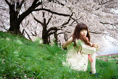 Zeiss Loxia 50mm f/2 Planar@ A7R (Ethan) Tags: portrait japan 50mm sony sakura naturelight loxia