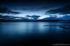 DSC_3970 (www.figedansletemps.com) Tags: morning seascape norway fjord bluehour matin srreisa norvge heurebleue furoyfishingcamp