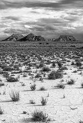 Bardenas reales (darnaiz2005) Tags: blancoynegro bn desierto navarra bardenasreales