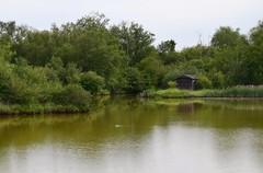 George C. Reifel Migratory Bird Sanctuary (careth@2012) Tags: reflection reflections landscape scenery view scenic scene naturereserve birdsanctuary georgecreifelmigratorybirdsanctuary