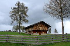 Baita di montagna in Alto Adige (marvin 345) Tags: italy house rustico casa italia rustic oldhouse altoadige baita rustica casavecchia casabaitadimontagna