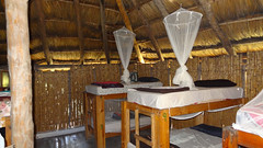 Inside Thatched Dorm, Baobab Beach Lodge and Backpackers, Vilanculos, Mozambique (dannymfoster) Tags: africa bed dorm resort mozambique baobab mocambique backpackers vilankulo vilanculos baobabbeachlodge thatcheddorm