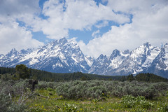 Grand Teton National Park (Phillip Waller) Tags: park mountains landscape view superior national vista grandteton