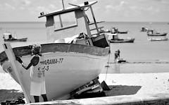 Pescador 2 (Helvio Silva) Tags: ocean sea people bw man praia beach monochrome brasil coast mar fishing pessoas barco ship pb joopessoa peixe pesca litoral paraiba oceano helviosilva