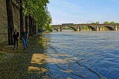 Paris : The receding of the flood / Quai Malaquais (Pantchoa) Tags: paris seine france fleuve eau inondation quai quaimalaquais promenade pavs pontducarrousel nikon d7100 24mmf18ged arbres dcrue