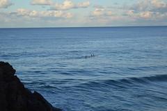DSC_0075 (JP98AUS) Tags: beach scenery nsw water sunset