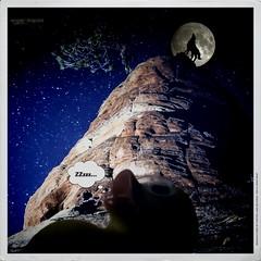 A duck in the night (Angelo Trapani) Tags: duck luna sonno viaggio notte lupo papero storia ducktales avventura