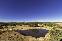 Flatness (W9JIM) Tags: reflection puddle citadel 7d w9jim 1022 10mm cedarmesa waterinthedesert